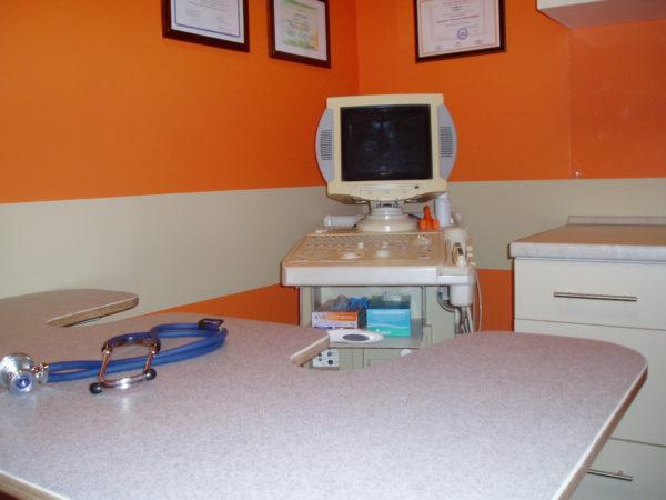 ЭХОкардиография в ветеринарной клинике Одинвет